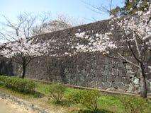 Стена замка Стоковое фото RF