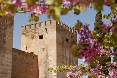 стена замока окруженная цветками Стоковая Фотография