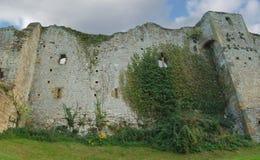 стена замока Стоковое Изображение