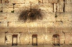 стена западная Стоковое Изображение RF