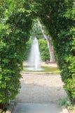 Стена зеленых дерева и фонтана Стоковые Изображения