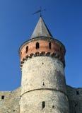 Стена и башня замка Средневековое украинское городище Стоковые Изображения