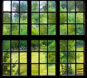 Стена и окно старого сельского дома внутрь с виноградиной выходят стоковое фото rf