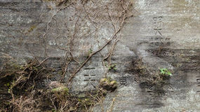 Стена и сочинительства стоковое фото rf