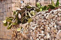 Стена камней в Мальте Стоковая Фотография RF