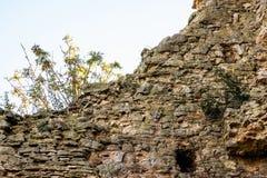 Стена камня старого загубленного fortress_ стоковая фотография rf