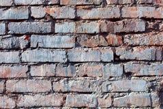 стена кирпича старая покрашенная Стоковое Изображение