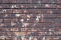 стена кирпича старая съемка кирпича предпосылки близкая вверх Кирпичная стена покрашенная Grunge Стоковое Изображение