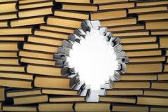 Стена книг Стоковая Фотография RF