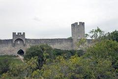 Стена кольца всемирного наследия Стоковая Фотография RF