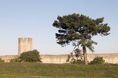 Стена кольца всемирного наследия Стоковые Фотографии RF