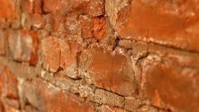 Стена красного кирпича Видео для предпосылки сток-видео