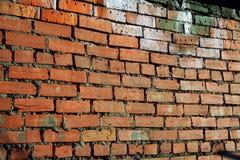 стена красного цвета grunge кирпича Стоковые Фотографии RF