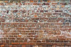 Стена краснокоричневого кирпича каменная Стоковая Фотография
