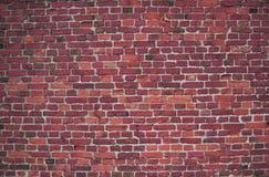 Стена красных/пинка (предпосылка, обои, кирпичи) Стоковые Изображения RF