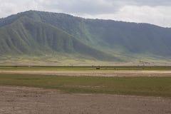 Стена кратера Ngorongoro стоковое изображение