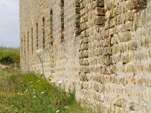 стена лужайки стоковое фото rf
