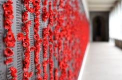 Стена мака перечисляет имена всех австралийцев которые умерли в обслуживании армий Стоковая Фотография RF