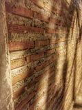 Стена мира стоковое изображение