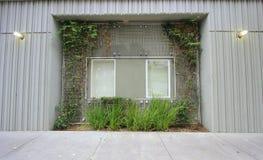 стена окна Стоковые Фото