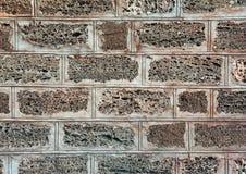 Стена осадочной породы, загородка, экстерьер, текстура Широко использованный в прибрежных местах для стены строения дома или заго стоковое изображение