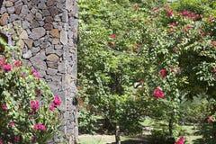 Стена от больших частей камня в окружать тропических заводов Стоковое фото RF