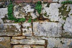 Стена песчаника Стоковое Изображение