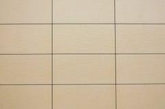 Стена покрытая с смотреть на панели Стоковые Изображения