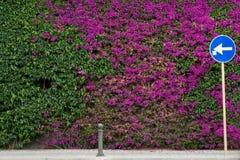 Стена покрытая с цветками и знак показывая направление  Стоковые Изображения RF