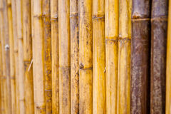 стена пользы предпосылки bamboo Стоковое Изображение