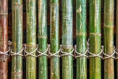 стена пользы предпосылки bamboo Стоковое фото RF