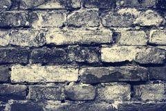 стена предпосылки старая Предпосылка Grunge backhander стоковое изображение rf