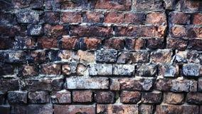 стена предпосылки старая Предпосылка Grunge backhander стоковое фото