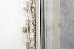 стена прессформы Стоковые Изображения RF