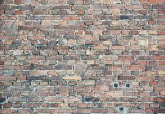 стена предпосылки текстурированная кирпичом Стоковое Изображение