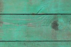 Стена планок древесной зелени Стоковое фото RF