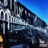 Стена пляжа Венеции Стоковое фото RF