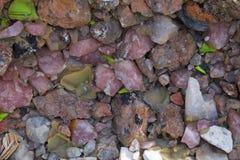 Стена драгоценной камня Стоковая Фотография