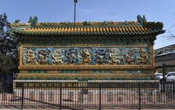 стена дракона 9 Стоковое Изображение