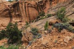 Стена скалы в длинном каньоне на следе заусенца Стоковое фото RF
