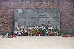 стена смерти auschwitz Стоковые Изображения