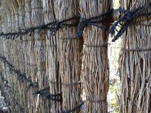 Стена снопа Стоковые Фотографии RF