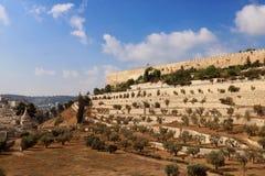 Стена старого города Иерусалима, Израиля Стоковое Фото