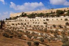 Стена старого города Иерусалима, Израиля Стоковое фото RF