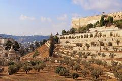 Стена старого города Иерусалима, Израиля Стоковое Изображение