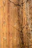 Стена старого деревянного дома сделанного из тонких вертикальных предкрылков Выдержанные и постаретые доски Стоковая Фотография RF