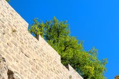 Стена старого замока Стоковое Изображение RF