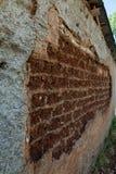 Стена старого крупного плана дома самана Стоковое фото RF