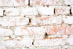 Стена старого старого кирпича белая с мхом Текстура кирпича старой стены Стоковые Фотографии RF
