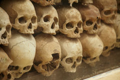 Стена старых человеческих черепов стоковые фотографии rf